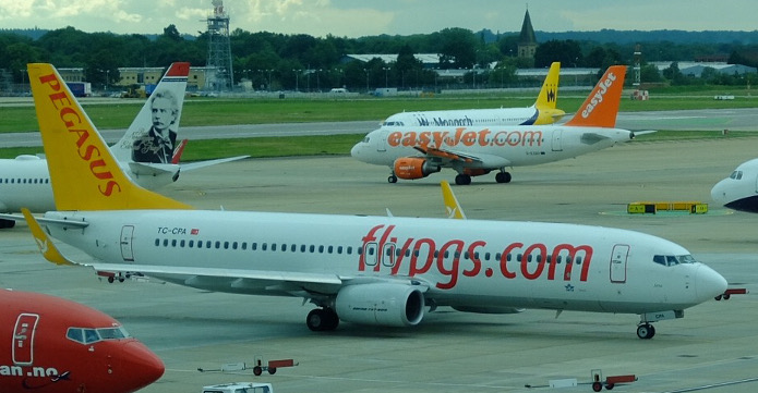 Pegasus airlines demonstrates their appreciation for porcine aviation